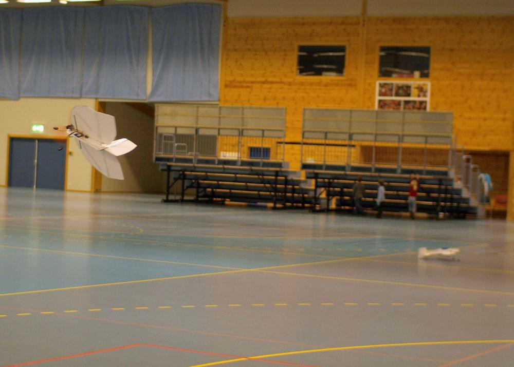Indoor (29).JPG